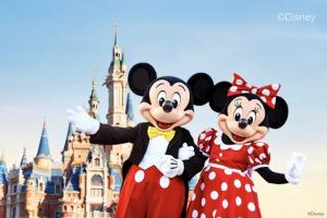 上海迪士尼乐园成人/儿童/长者【一日】标准票