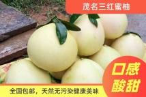 【两只装】茂名三红蜜柚*全国包邮(约5斤)