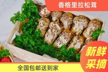 【云南】新鲜松茸500克(3-5cm)新鲜采集香格里拉独克宗花巷直供(全国包邮)